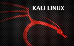 Kali Linux İndir